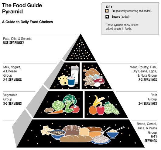 rebuilding food pyramid Rebuilding inner cities must makes economic sensenew york: december 1   the food guide pyramid: a guide to daily food choices available from.